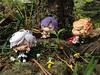 DLblog_colorcolle_04sakamaki_01_1.jpg