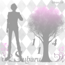 ticon_2016BIRTH_1104subaru_01.png
